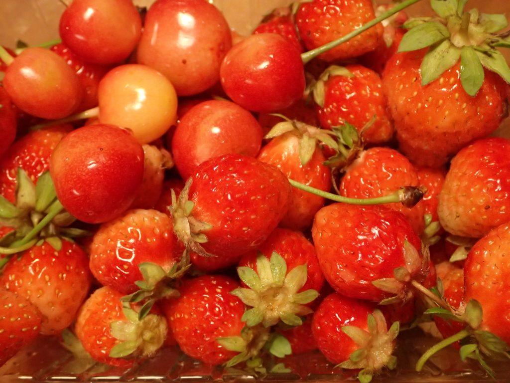 真っ赤なイチゴとサクランボ!