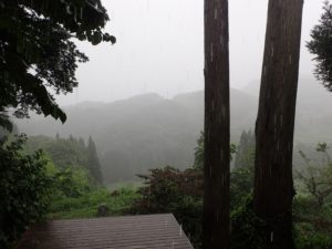 ひと夏に、まるで乾期と雨期とがあるような感じです。