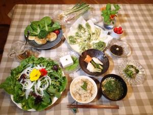 タケノコご飯、アオサの味噌汁、採れたて新鮮サラダ、ピーナツ豆腐(本ワサビと純胡椒を乗せて)、野生のミツバのお浸し、ノビル、アサツキに自家製味噌添え、自家製ぬか漬け、自家製大豆のおからのハンバーグ、山菜の天ぷら(タラノメ、山ウド、クズの新芽、野生のミツバ、田セリ)、もずく酢、イチゴのロームース